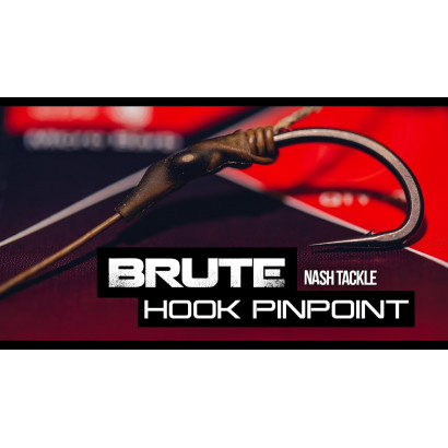 NASH Pinpoint Brute Hooks misura 2/4/6/8